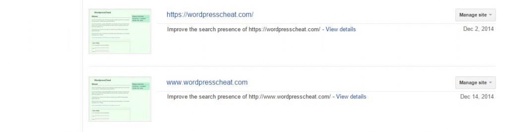 Google Add WWW Site