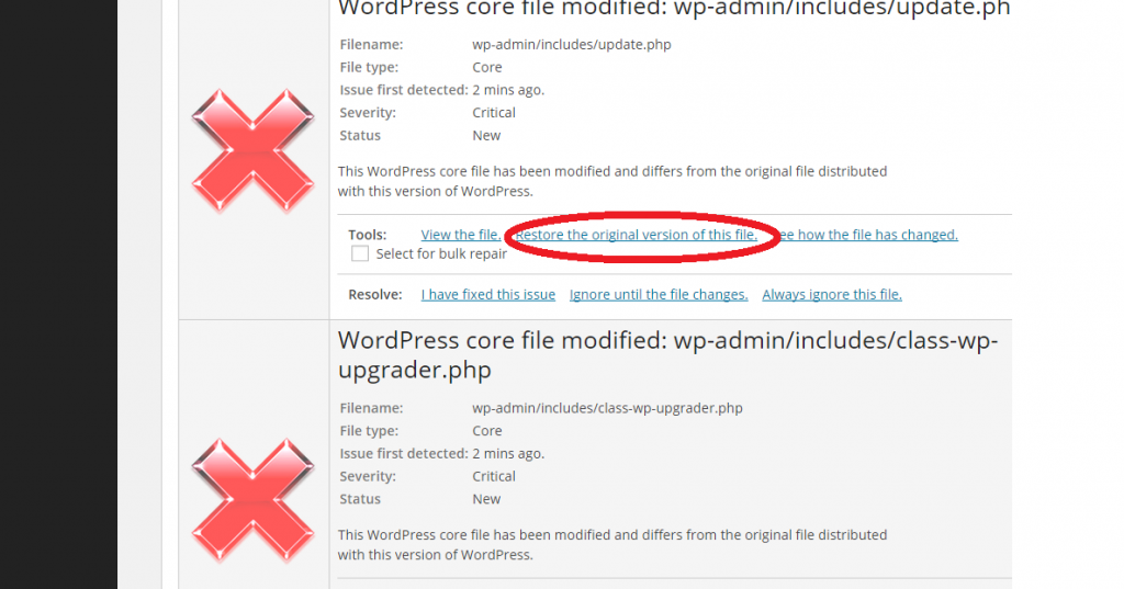 Wordpress Updater Restore Original Version