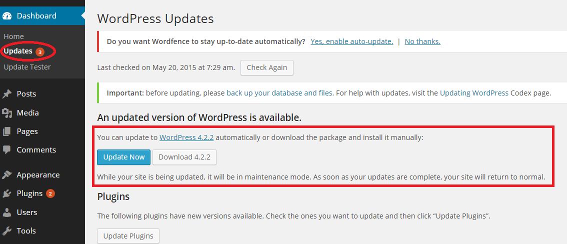 Wordpress site not updating